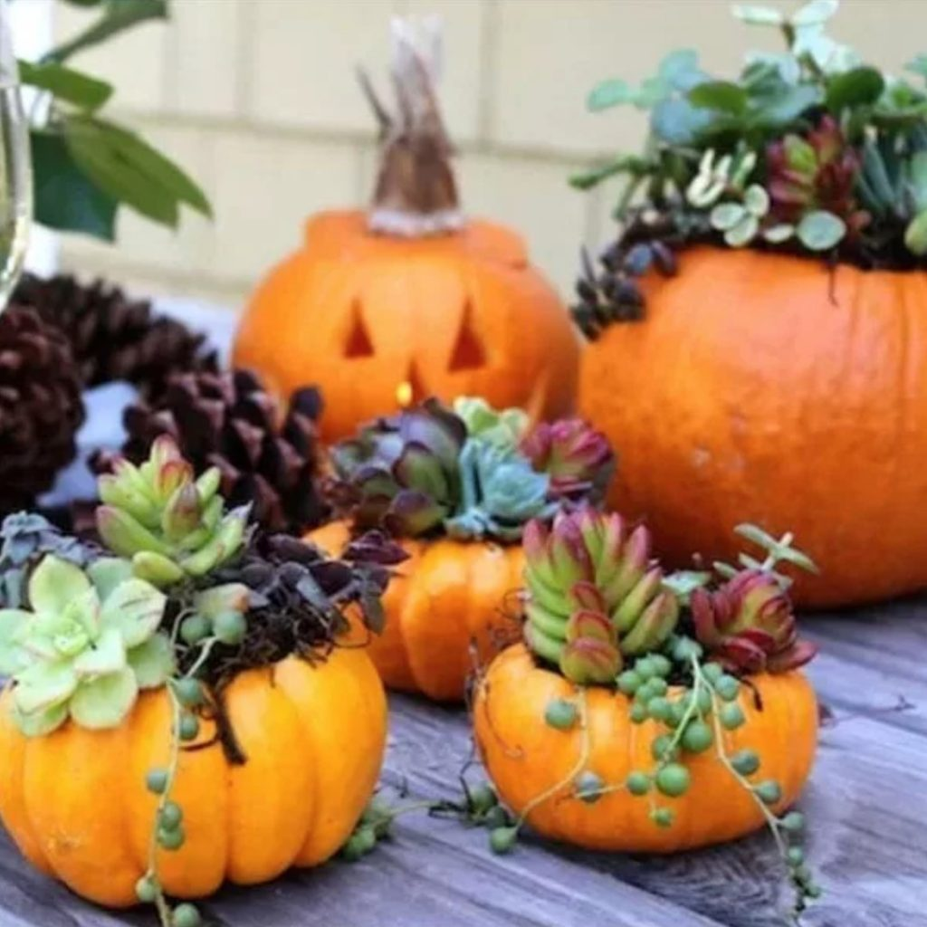 100 Adorable DIY Fall Home Decoration Ideas On A Budget 67