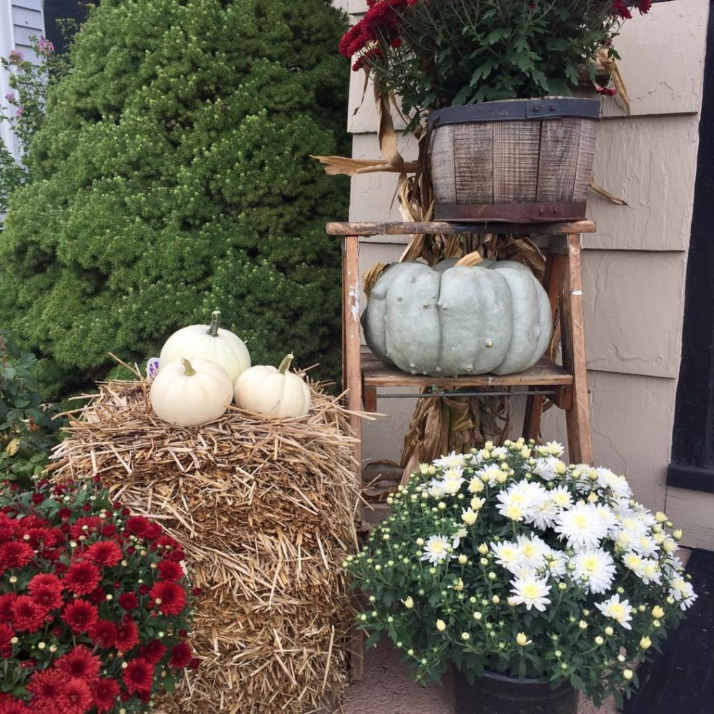 80+ Creative Fall Decoration Ideas With Pumpkins You Will Totally Love (11)