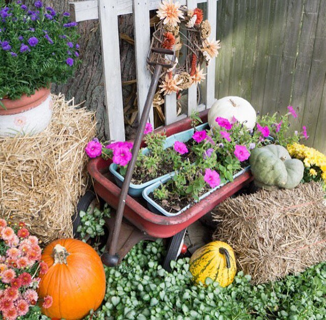 80 Creative Fall Decoration Ideas With Pumpkins You Will Totally Love 2