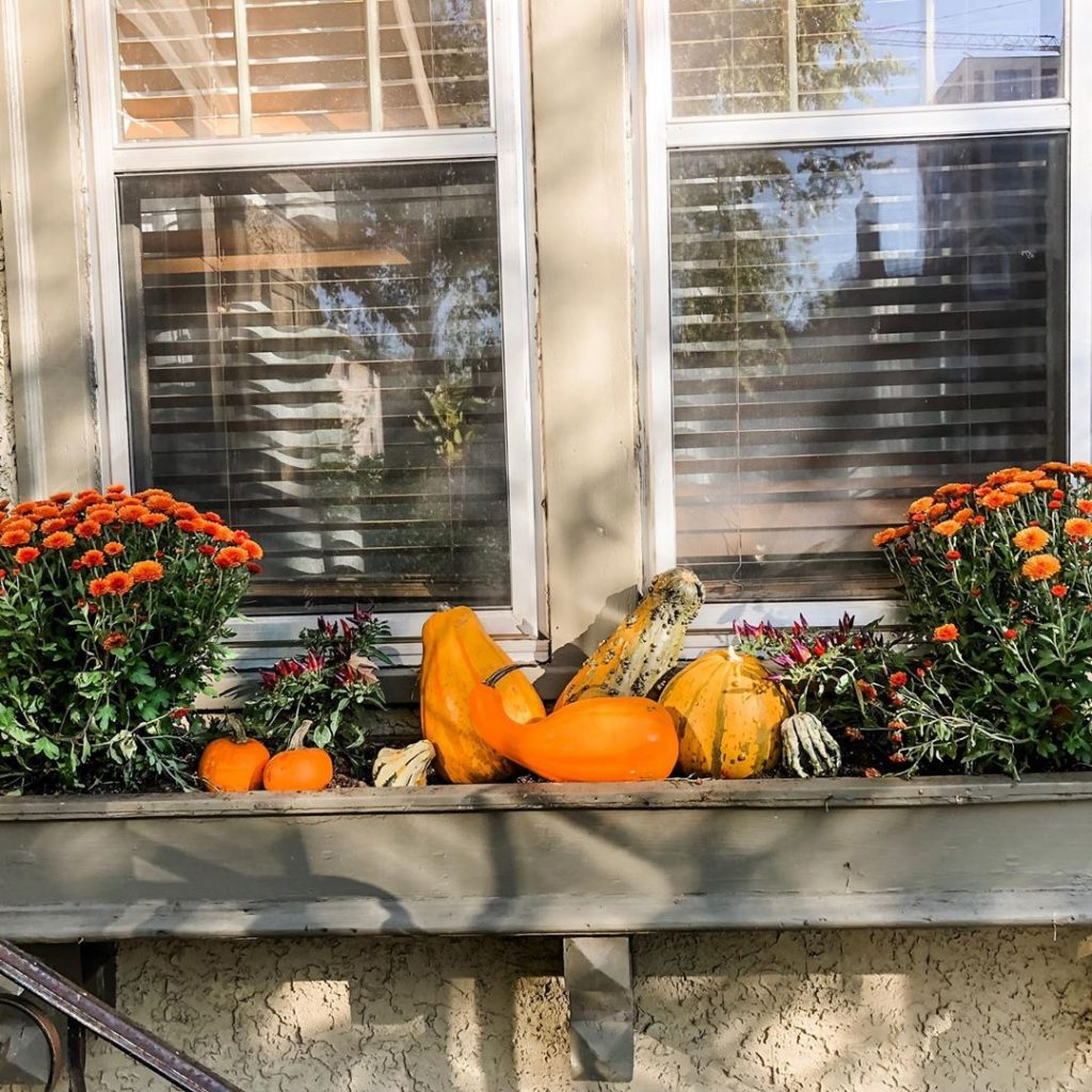 80+ Creative Fall Decoration Ideas With Pumpkins You Will Totally Love (48)