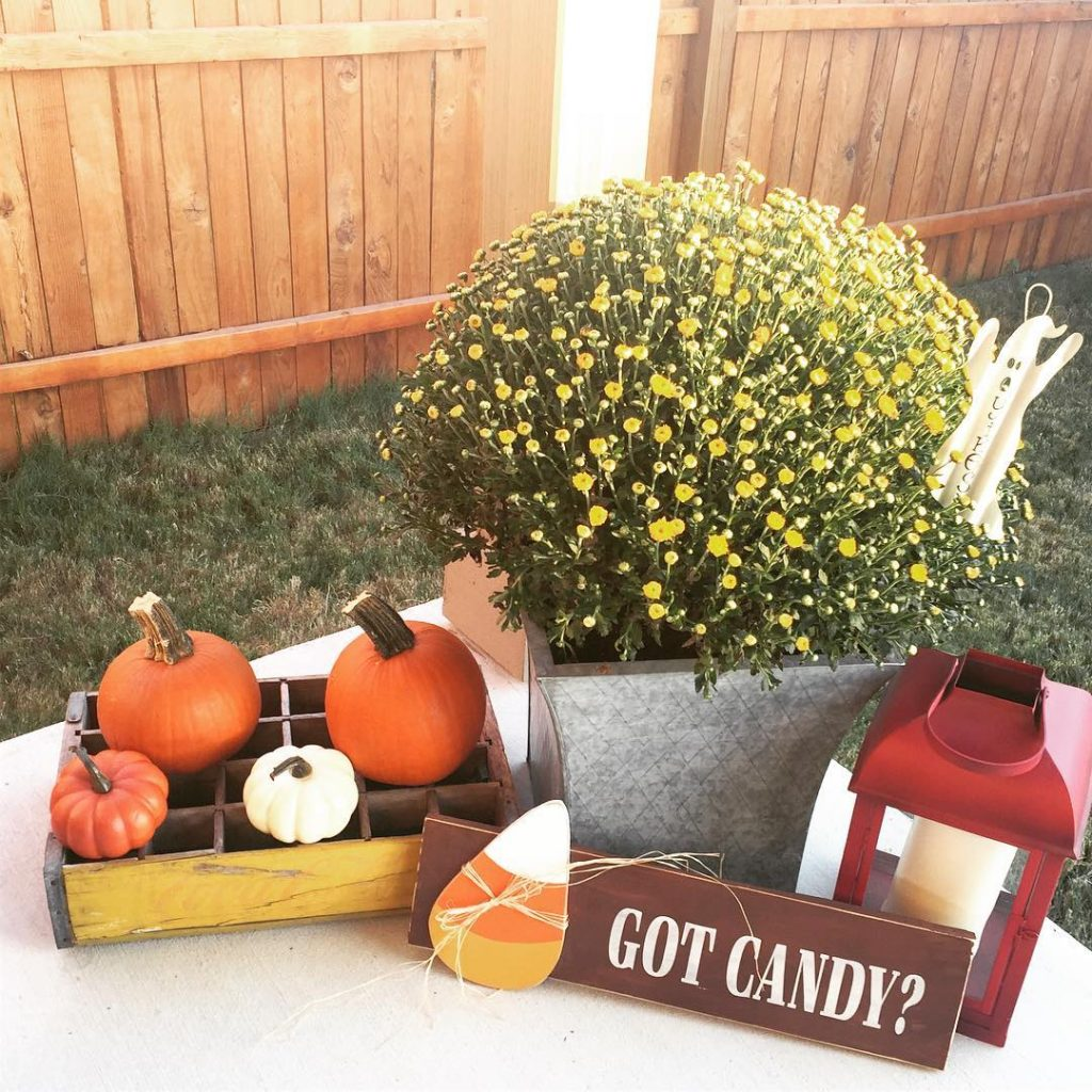 80+ Creative Fall Decoration Ideas With Pumpkins You Will Totally Love (5)