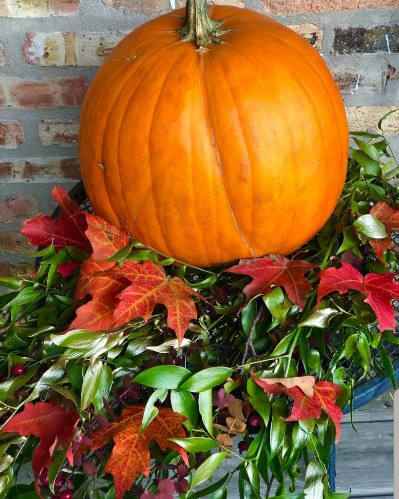 80+ Creative Fall Decoration Ideas With Pumpkins You Will Totally Love (51)