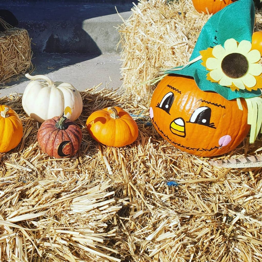 80+ Creative Fall Decoration Ideas With Pumpkins You Will Totally Love (53)