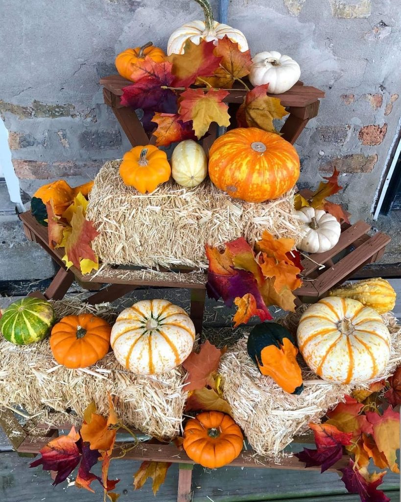 80+ Creative Fall Decoration Ideas With Pumpkins You Will Totally Love (55)