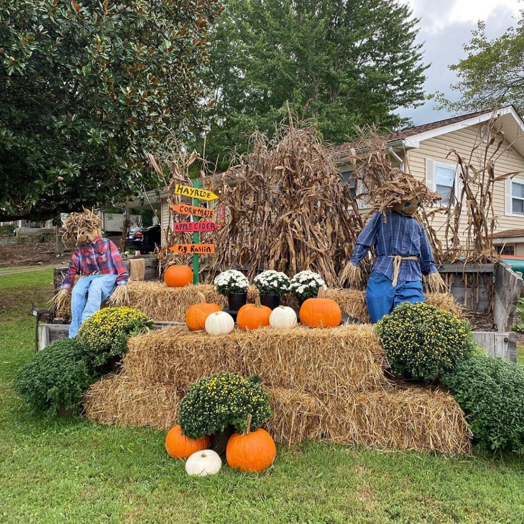 80+ Creative Fall Decoration Ideas With Pumpkins You Will Totally Love (62)