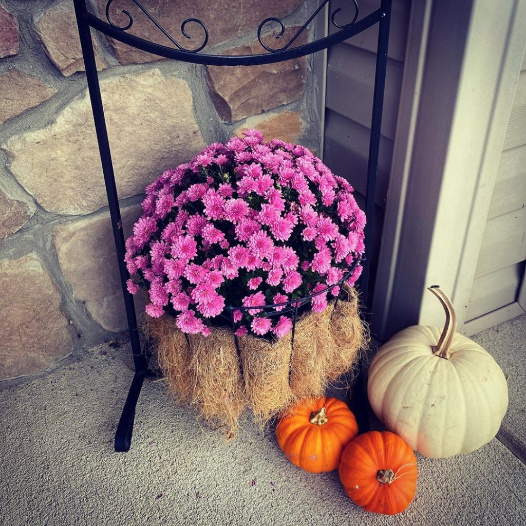 80+ Creative Fall Decoration Ideas With Pumpkins You Will Totally Love (82)