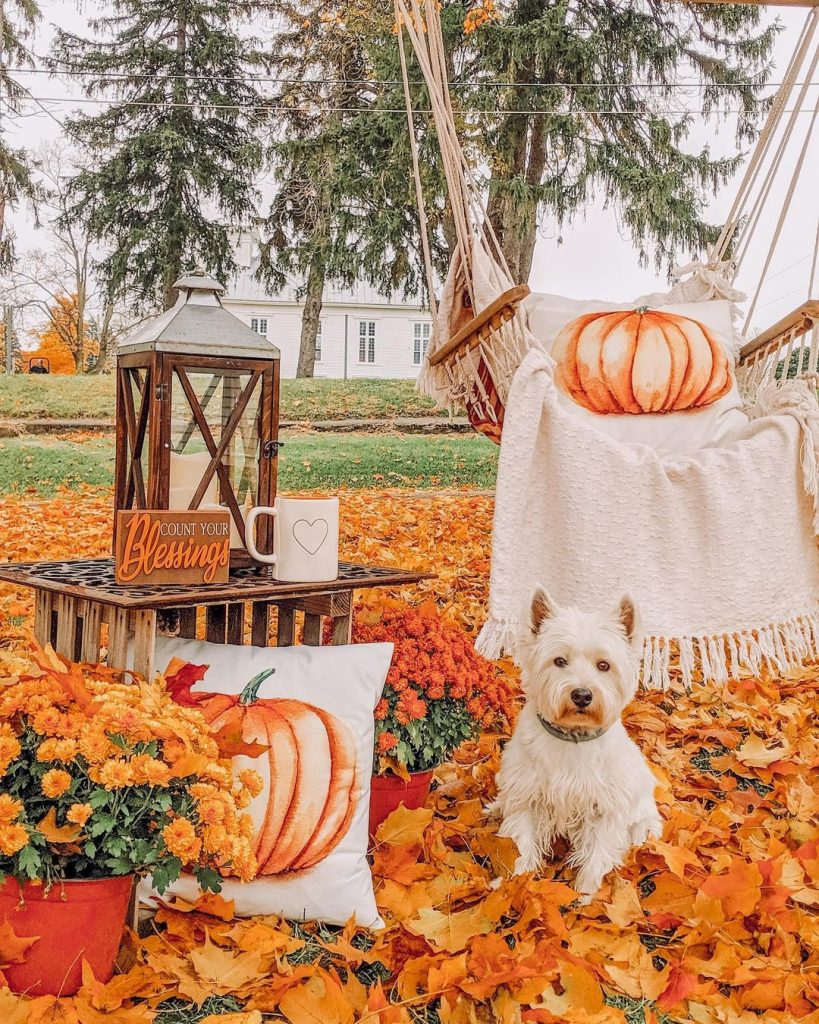 100 Thanksgiving Decoration Ideas Stylize Your Home With Fall Accents 94