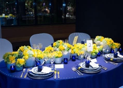 Inspiring Blue And Yellow Party Decoration Ideas 41